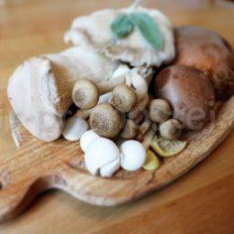 Соленые грибы на зиму